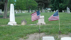 Military flags at a cemetery Stock Footage
