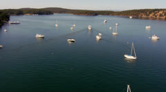 Aerial Heli Footage of Calm Sunny Harbor - stock footage