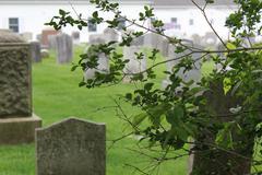 Peer Through Bushes at Cemetery Stock Photos