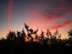 Beautiful sky - stock photo
