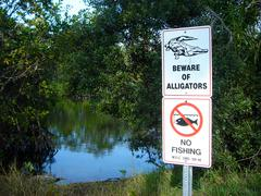 Alligators sign - stock photo