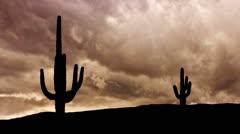 Arizona Saguaro dramatic storm Stock Footage