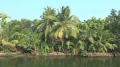 Kerala backwaters palms akibg bank  - stock footage