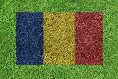 Flag of romania as a painting on green grass Stock Photos