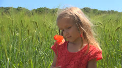 Child Smelling a Poppy Flower, Girl Playing Near a Wheat Field, Children Stock Footage