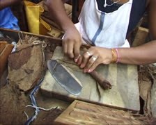 Stock Video Footage of wrapping, rolling and cutting a handmade Cuban cigar