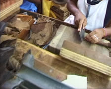 Manufacturing of handmade Cuban cigar - cut and press in wooden form Stock Footage