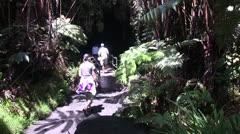 Volcano National Park, lava tube Stock Footage