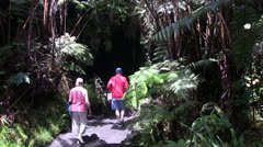 Lava tube, Volcano National Park Hawaii Stock Footage