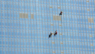 Stock Video Footage of Three urban alpinists are on steel and glass facade of high-rice building