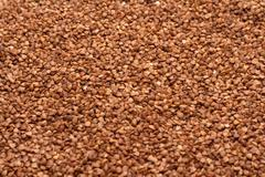 buckwheat, background - stock photo