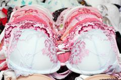 feminine underbodices - stock photo