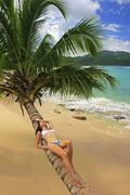 Young woman in bikini laying on leaning palm tree at rincon beach Stock Photos