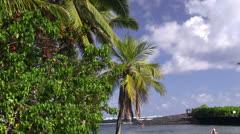 Paradise tropical lagoon Stock Footage