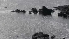 Ripples on the water, tide pool Stock Footage