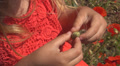 Child Playing with a Bud of a Poppy Flower on a Field, Children Footage