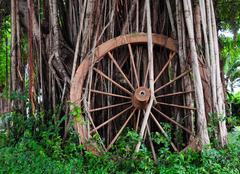 Wooden wheel Stock Photos