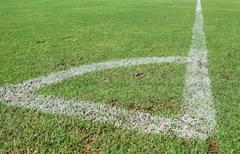 Green grass, soccer field Stock Photos