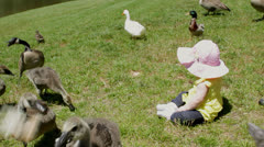 Baby infant girl with baby geese 2 Stock Footage