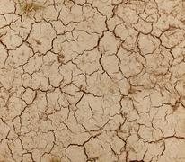 Dry land texture Stock Photos