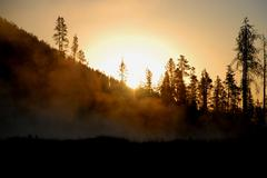 Sun Peeking Over a Misty Evergreen Hill Stock Photos