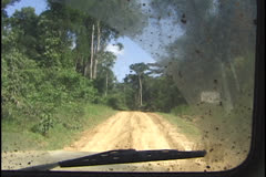 Amazon forest road Stock Footage