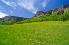 pasture in the san juan mountains in colorado - stock photo