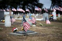 american flags honoring war dead - stock photo