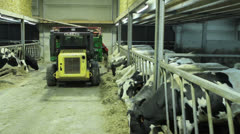 Farmer is feeding his milk cows with tractor Stock Footage