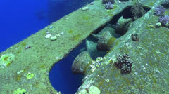 Shipwreck Salem Express in Red Sea Stock Footage