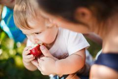 baby eating an apple - stock photo
