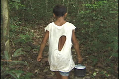 Rubber tapper in the state of Acre, Brazil. Stock Footage