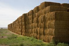 Hay bales huge stack corner of farmers field farm staple Stock Photos