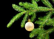 Stock Photo of christmas tree ornaments
