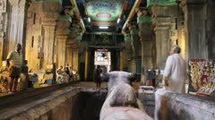 India Tamil Nadu Madurai temple hall over bull statue 7 Stock Footage