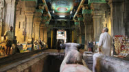 Stock Video Footage of India Tamil Nadu Madurai temple hall over bull statue 7