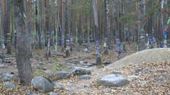 Forest and dressing desires Stock Footage
