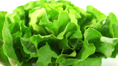 Organic food, lettuce Stock Footage