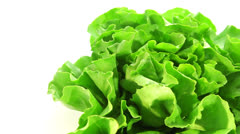 Lettuce on white background Stock Footage