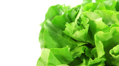 Lettuce, food background Stock Footage