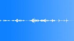 Desolated_strings_&_wood_loose_strings_rattling_07.wav Sound Effect