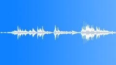 Desolated_strings_&_wood_loose_strings_rattling_11.wav Sound Effect