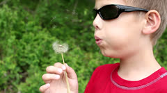Young boy blowing dandilion Stock Footage