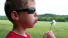 Young child blowing a dandelion - stock footage