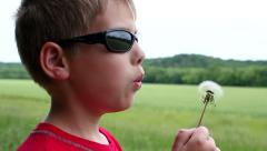 Slow motion of young boy blowing dandelion Stock Footage