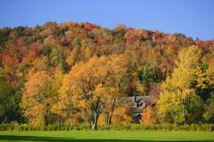 Hillside of colorful maple trees in vermont in the autumn Stock Photos