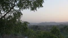 India Rajasthan Udaipur hazy Aravalli hill and leaves at dusk 50 Stock Footage