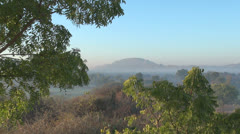 India Rajasthan Udaipur morning lit leaves and distant Aravalli hill 44 Stock Footage