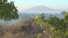 India Rajasthan Udaipur area dawn light falls on leaves and hills 42 Stock Footage