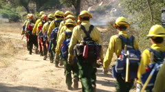 Firefighters Walking Into Brush Fire - stock footage